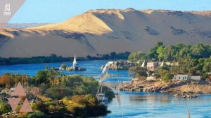 الخط الساخن لشركه عقار مصر
